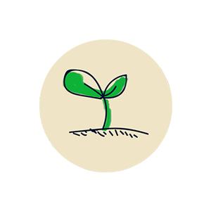 icon-flower-02